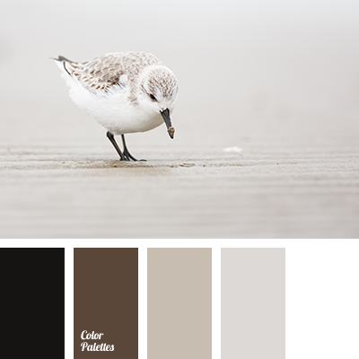 Black And White Color Palette Ideas