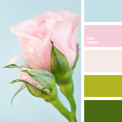 Light green and pink color palette ideas Good color combination for pink