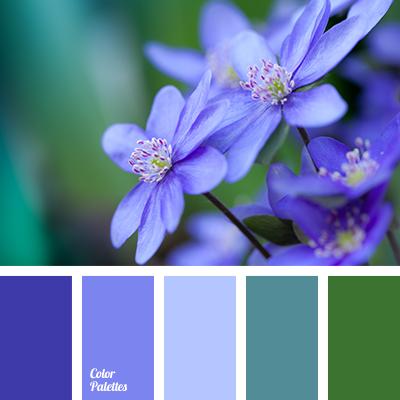 violetand blue