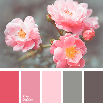 Magenta And Gray Color Palette Ideas
