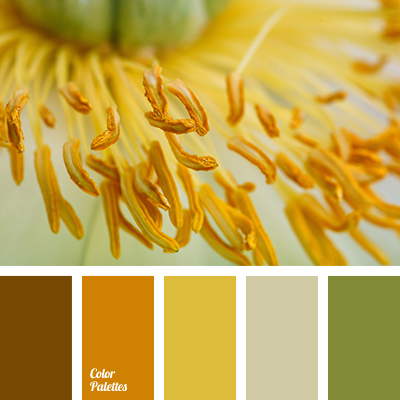 Brown And Orange Color Palette Ideas