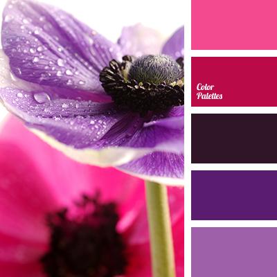 magenta and violet