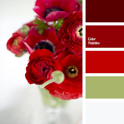 Color Palette 2079