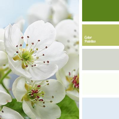 Color Palette 2117