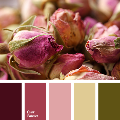 Palette For A Style Of Shabby Chic Color Palette Ideas