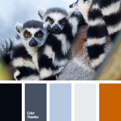 cool shades of gray