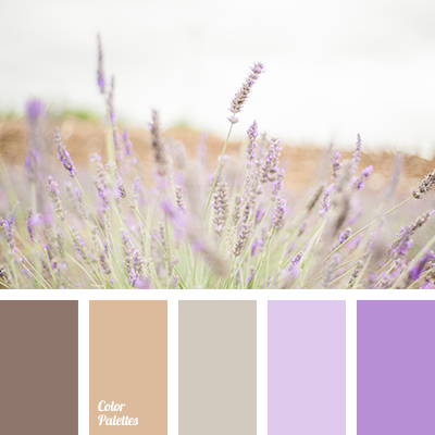 color of lavender