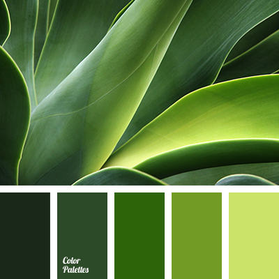 forest green color palette ideas