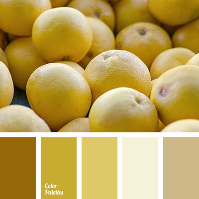 monochrome palette