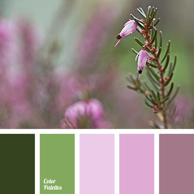 gentle color solution