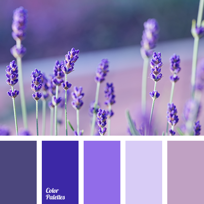 http://colorpalettes.net/wp-content/uploads/2015/08/color-palette-2234.png