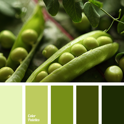 Color Palette 2272
