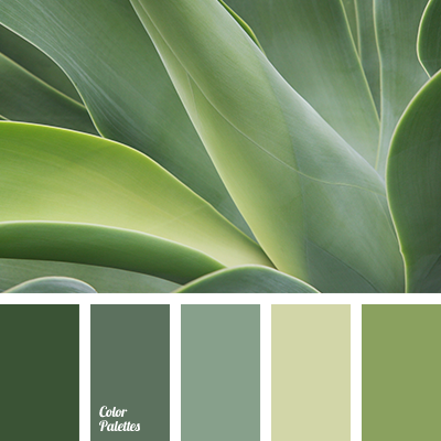 Monochrome Olor Palette Color Palette Ideas