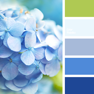 Color Palette 2309