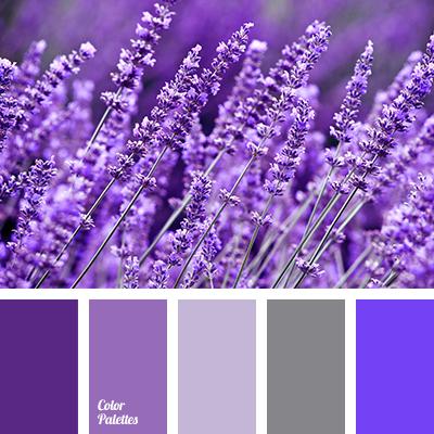 pale-violet