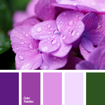 Plum Color Palette Ideas