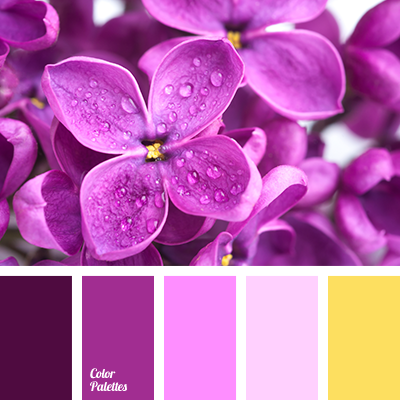 Deep Aubergine Paint Color