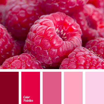Hot Pink Color Palette Ideas: good color combination for pink