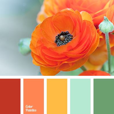 http://colorpalettes.net/wp-content/uploads/2015/10/color-palette-2367.png
