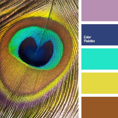 The Color Of Peacock Feathers | Color Palette Ideas