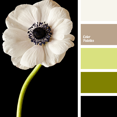beige with coffee color