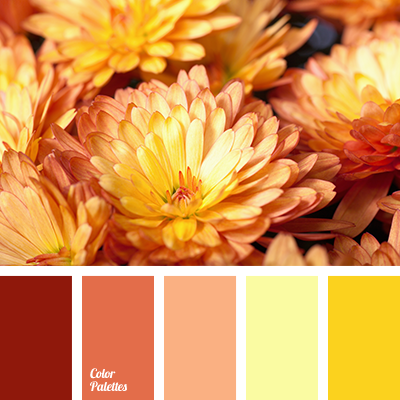 Autumn Colors Color Palette Ideas