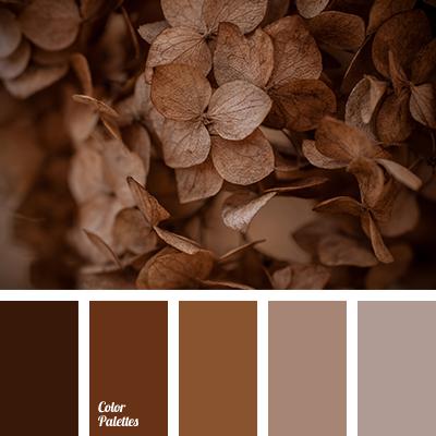 palette for fall
