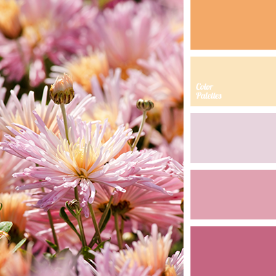 delicate palette for wedding