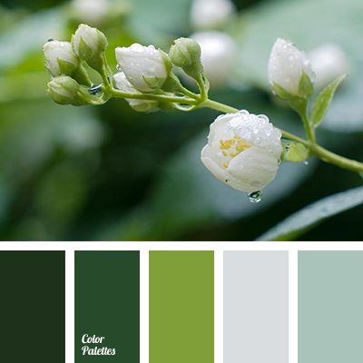 http://colorpalettes.net/wp-content/uploads/2015/12/color-palette-2448.png