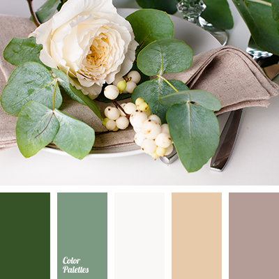 Color Palette 2456