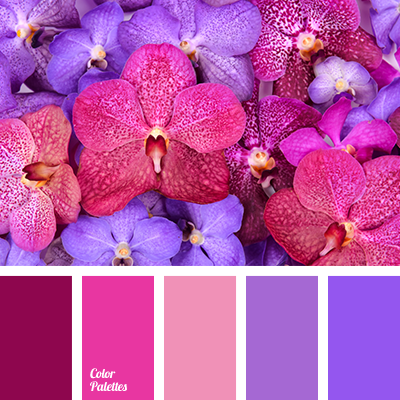 Violet color palettes tag color palette ideas Red and pink colour combination
