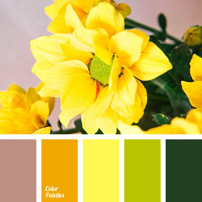 Color Palette 2469