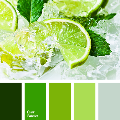 Color Palette 2472