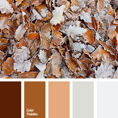 Color Palette 2490 Color Palette Ideas