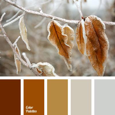 winter color solution