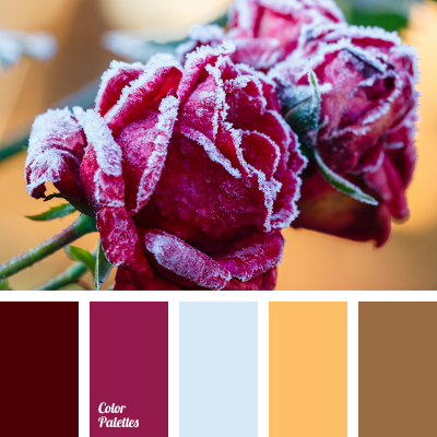 rose colors