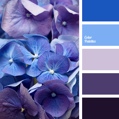 color of violets