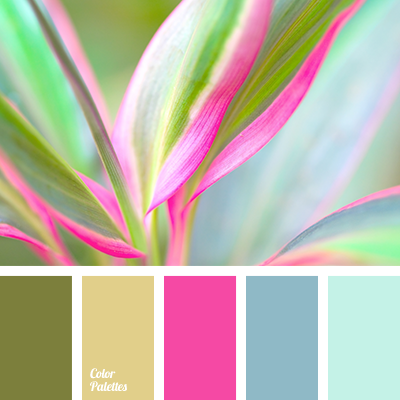 House Color Scheme Color Palette Ideas: good color combination for pink