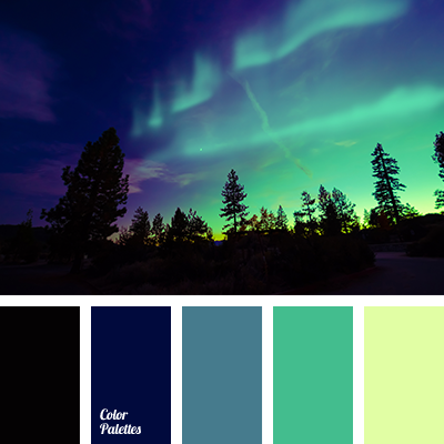 Night Color Color Palette Ideas