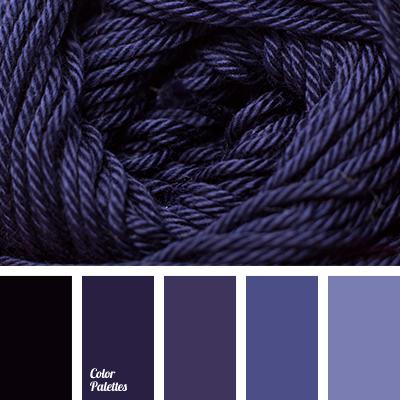 Color Palette 2570 Blue Purple