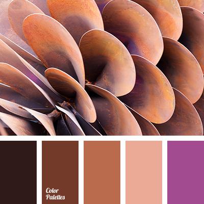 Color Palette 2585