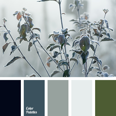 Color Palette 2637