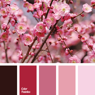 http://colorpalettes.net/wp-content/uploads/2016/03/color-palette-2669.png