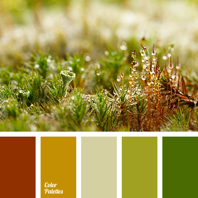 Color Palette 2673