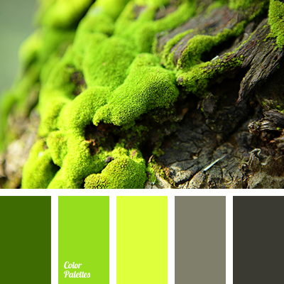 Moss Color Color Palette Ideas