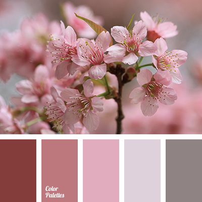 Gentle Colors Color Palette Ideas