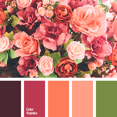 Image result for living coral color palette