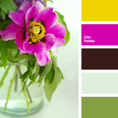 http://colorpalettes.net/wp-content/uploads/2016/03/color-palette-2724.png
