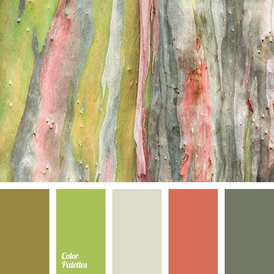 Coral color color palette ideas for Olive green colour combination