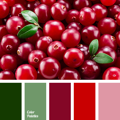 Berry Color Color Palette Ideas
